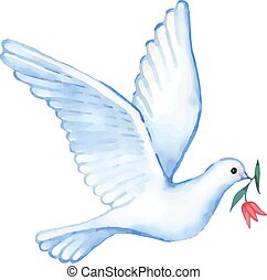 Watercolor soaring dove with flower, vector illustration...