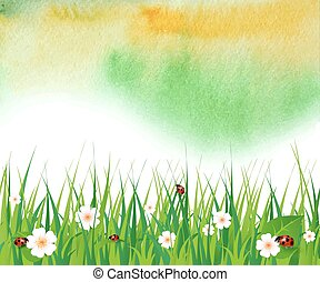 watercolor summer background with green grass