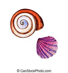 Watercolor summer beach seashell tropical elements, underwater creatures.