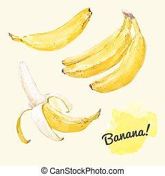 Watercolor vector bananas set