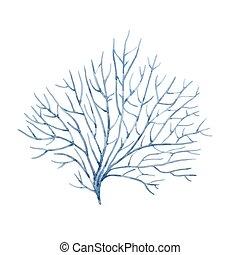 Watercolor vector underwater corals