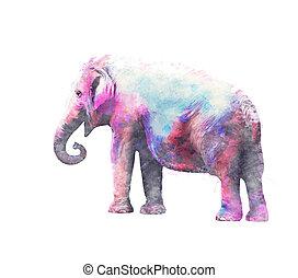 watercolor, vrouwlijk, elefant