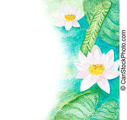 watercolor water lillies background
