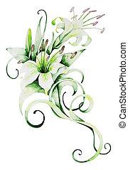 Watercolor white lilies