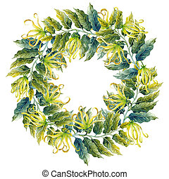 Watercolor ylang ylang wreath isolated on white background....