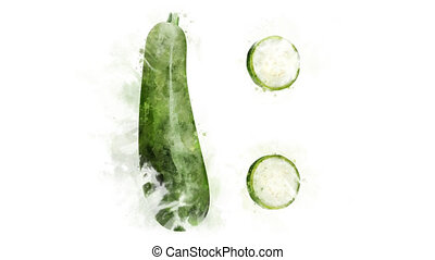 Watercolor Zucchini picture appearance - On a transparent...