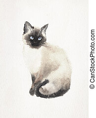 Watercolored illustration of a Siamese cat