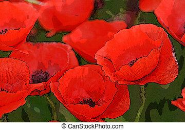 watercolour poppies