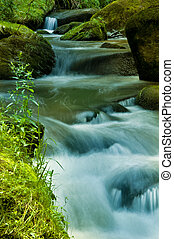 """A brook in a forest. Through the longer exposure time, the water """"flows"""""""
