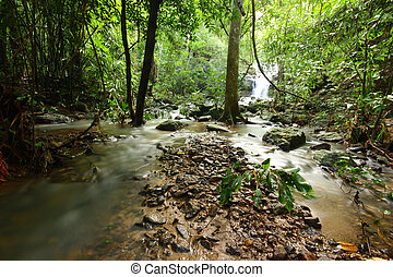 Watercourse of waterfall in tropical deep forest