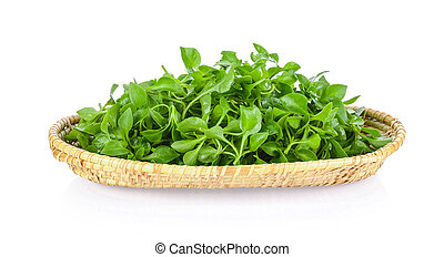 watercress in a basket isolated on white background