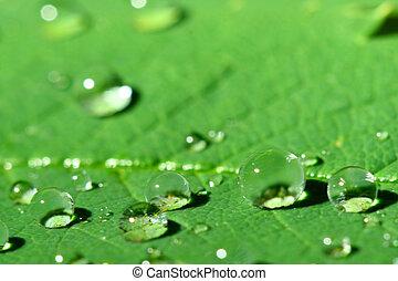 waterdrop, натуральный