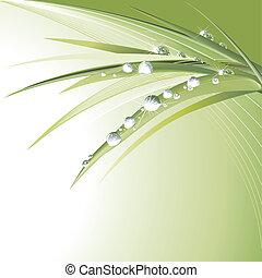 waterdrops, en, hojas verdes