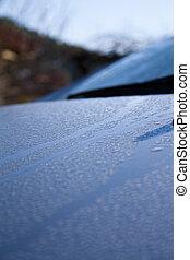 Waterdrops on car hood