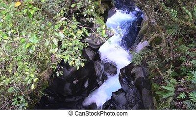 Waterfal in Fiordland NZL