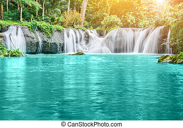 waterfall., 森林, 海原