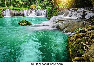waterfall., 숲, 깊다