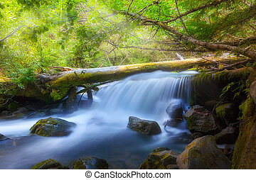 Waterfall along Cold Spring Creek in Oregon