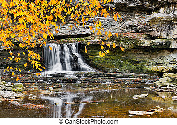 Waterfall and Golden Leaves