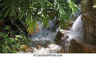 Waterfall and greenery  - Waterfall in the tropical