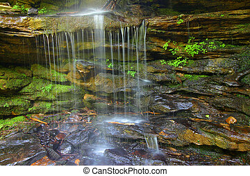 Waterfall and Moss - Moss grows over rocks at the base of a...