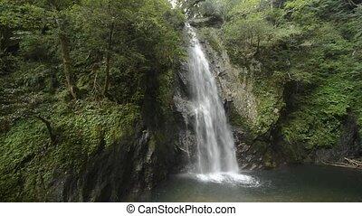 Waterfall and trees - White waterfall falling along bedrock...