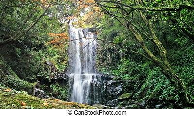 Waterfall at fall, Taiwan