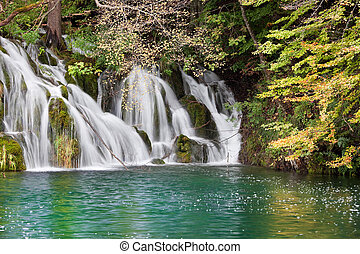 Waterfall Autumn Scenery