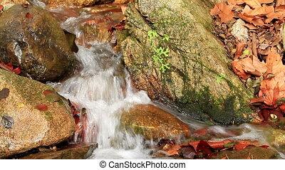Waterfall - Beautiful waterfall