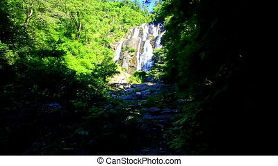 Waterfall Cascade among Bright Green from Dark Shady Place -...