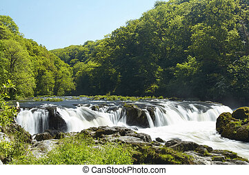 Waterfall - Cenarth Falls in Pembrokeshire, Wales.