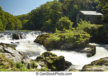 Cenarth Falls in Pembrokeshire, Wales.