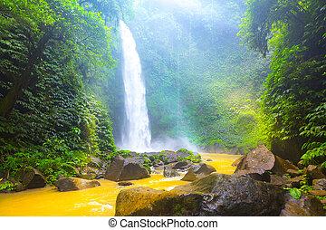 Waterfall hidden in the tropical jungle. Nungnung, Bali