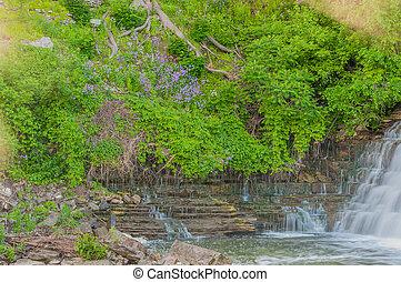 Waterfall In A Glen