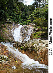 Waterfall in a tropical forest