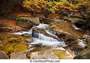 Waterfall in Autumn Scenery