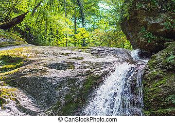 Waterfall in dark forest