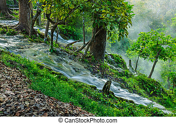 waterfall in deep forest.