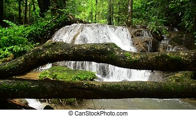 Waterfall In Deep Forest National Park