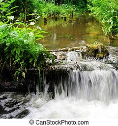 Waterfall in forest river. Belarus. Grodno region. River ...