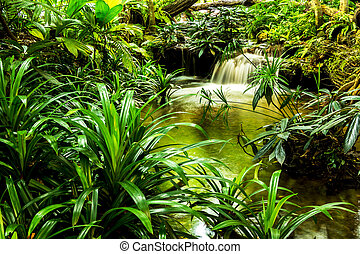 waterfall in garden design.