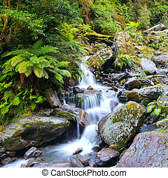 Waterfall in lush rain forest - Long Exposure image of a...