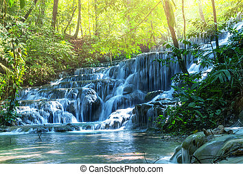 Waterfall in Mexico - waterfall in jungle,Mexico