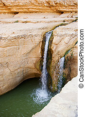 Waterfall in mountain oasis Chebika at border of Sahara, Tunisia, Africa