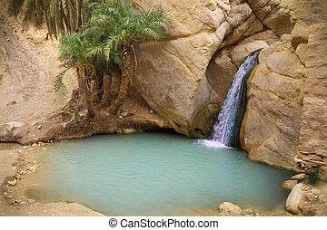Waterfall in mountain oasis Chebika, Tunisia, Africa