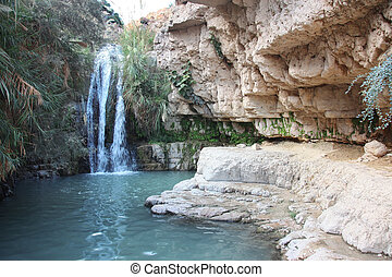 Waterfall in national park Ein Gedi near the Dead Sea in...