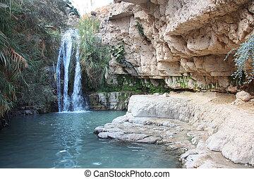Waterfall in national park Ein Gedi near the Dead Sea in...