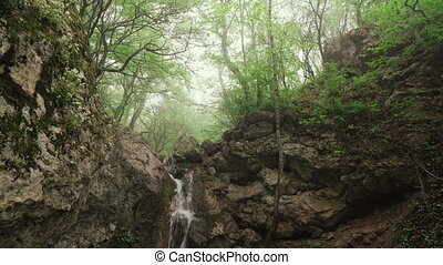 Waterfall in the forest among the rocks