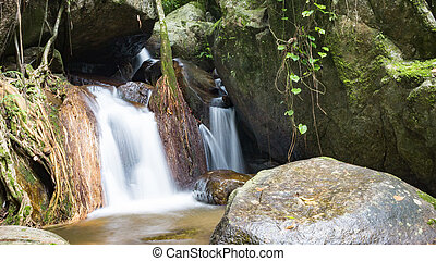 Waterfall in the forest at Mae Kampong village Chiang Mai, Thailand