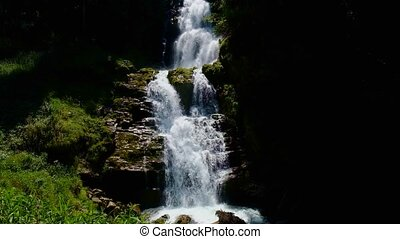 Waterfall in the forest at summer